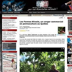 Les Fermes Miracle, un verger commercial en permaculture au Québec