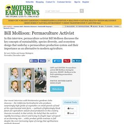 Bill Mollison: Permaculture Activist - Sustainable Farming