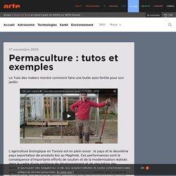 Permaculture : tutos et exemples