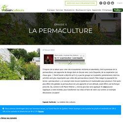 LES URBAINCULTEURS VIA YOUTUBE 27/02/19 Épisode 12 – La permaculture avec Louis Duquette