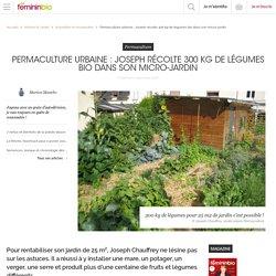Permaculture urbaine: Joseph récolte 300 kg de légumes bio dans son micro-jardin
