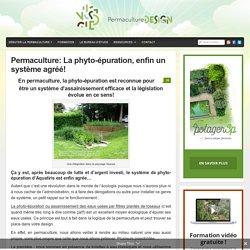Permaculture: La phyto-épuration, enfin un système agréé! : PermacultureDesign