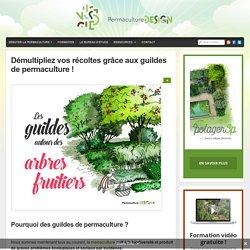 Démultipliez vos récoltes grâce aux guildes de permaculture ! : PermacultureDesign
