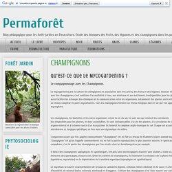 Permaforêt: CHAMPIGNONS