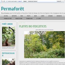 Permaforêt: Plantes bio indicatrices