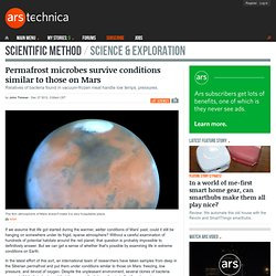 Permafrost microbes survive conditions similar to those on Mars