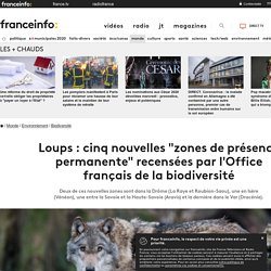 """Loups : cinq nouvelles """"zones de présence permanente"""" recensées par l'Office français de la biodiversité"""