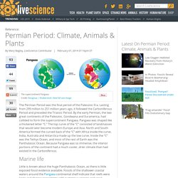 Permian Period: Climate, Animals & Plants