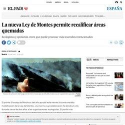 La nueva Ley de Montes permite recalificar áreas quemadas