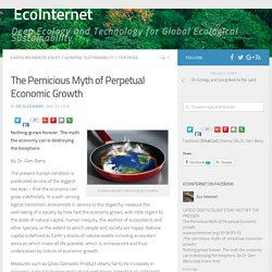 The Pernicious Myth of Perpetual Economic Growth