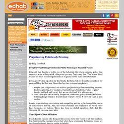 Perpetrating Pointlessly Pruning - Billy Goodnick - Santa Barbara Edhat