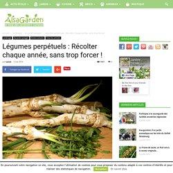 Légumes perpétuels : Récolter chaque année, sans trop forcer