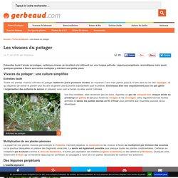 Plantes vivaces au potager : légumes perpétuels, aromatiques pérennes