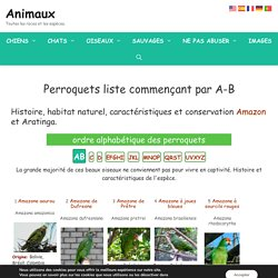 Perroquets liste commençant par A-B - (Perroquets, Aras, perruches et autres perroquets)