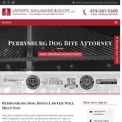 Dog Bite Lawyers Perrysburg