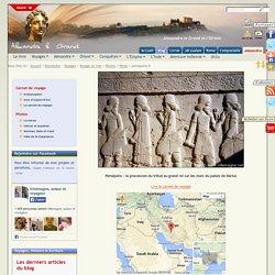 Persépolis : la procession du tribut au grand roi sur les murs du palais de Darius - Voyage en Iran - Alexandre le Grand et l'Orient