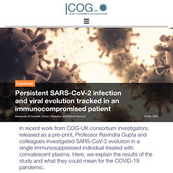 Persistent SARS-CoV-2 infection and viral evolution tracked in an immunocompromised patient – COG-UK Consortium