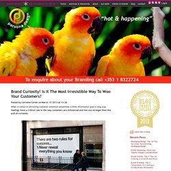 Branding Experts & Design Consultants