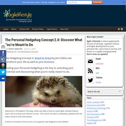 The Personal Hedgehog Concept: Unlock Your Potential