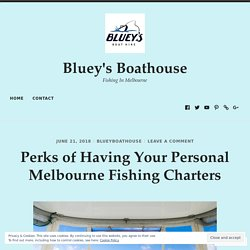 Perks of Having Your Personal Melbourne Fishing Charters – Bluey's Boathouse