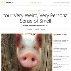 Your Very Weird, Very Personal Sense of Smell