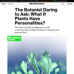 Do Plants Have Personalities? This Botanist Is Looking to Prove They Do