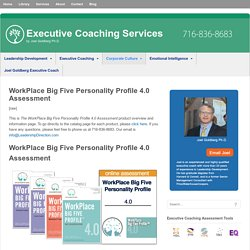 Work Place Big Five Personality Assessment - CENTACS
