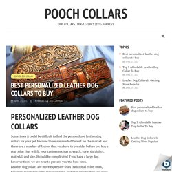 Best personalized leather dog collars to buy - Pooch Collars
