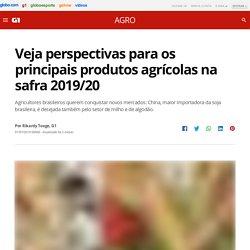 Veja perspectivas para os principais produtos agrícolas na safra 2019/20