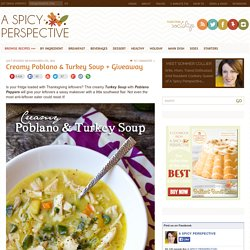A Spicy Perspective Turkey Soup with Poblano Peppers
