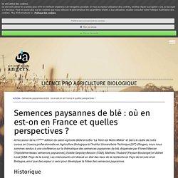Semences paysannes de blé : où en est-on en France et quelles perspectives ? - Site de blog-licence-agriculture-bio !