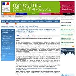 L'utilisation des pesticides en France : état des lieux et perspectives de réduction