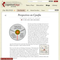 Perspectives on Cynefin