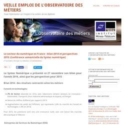 Le secteur du numérique en France : bilan 2014 et perspectives 2015 (Conférence semestrielle du Syntec numérique)