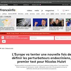 L'Europe va tenter une nouvelle fois de définir les perturbateurs endocriniens, premier test pour Nicolas Hulot