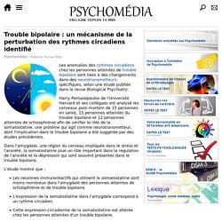 Trouble bipolaire: un mécanisme de la perturbation des rythmes circadiens identifié