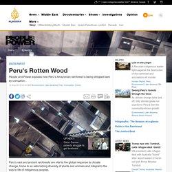 Peru's Rotten Wood