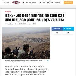 Irak : «Les peshmergas ne sont pas une menace pour les pays voisins»