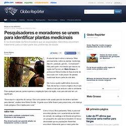 Repórter - Pesquisadores e moradores se unem para identificar plantas medicinais
