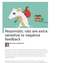 Pessimistic rats are extra sensitive to negative feedback