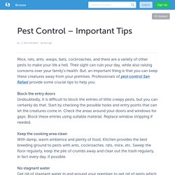 Pest Control – Important Tips