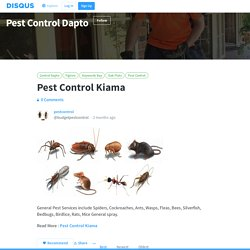 Pest Control Kiama