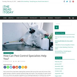 How Can Pest Control Specialists Help You?