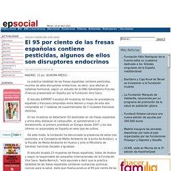 EPSOCIAL 11/07/13 El 95 por ciento de las fresas españolas contiene pesticidas, algunos de ellos son disruptores endocrinos