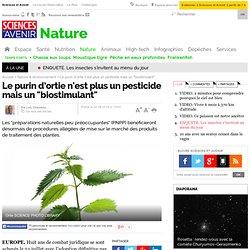 """Le purin d'ortie n'est plus un pesticide mais un """"biostimulant"""""""