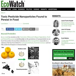 ECOWATCH 27/08/13 Toxic Pesticide Nanoparticles Found to Persist in Food