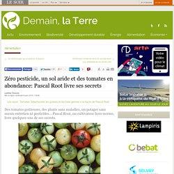 Zéro pesticide, un sol aride et des tomates en abondance: Pascal Root livre ses secrets