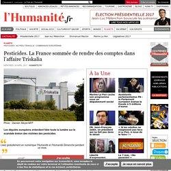 Pesticides. La France sommée de rendre des comptes dans l'affaire Triskalia