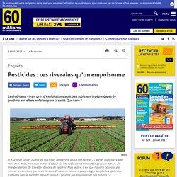 Pesticides: ces riverains qu'on empoisonne