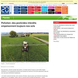 GOOD PLANET 13/12/13 Pollution: des pesticides interdits empoisonnent toujours nos sols